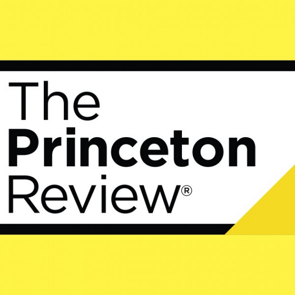 princeton review cfa